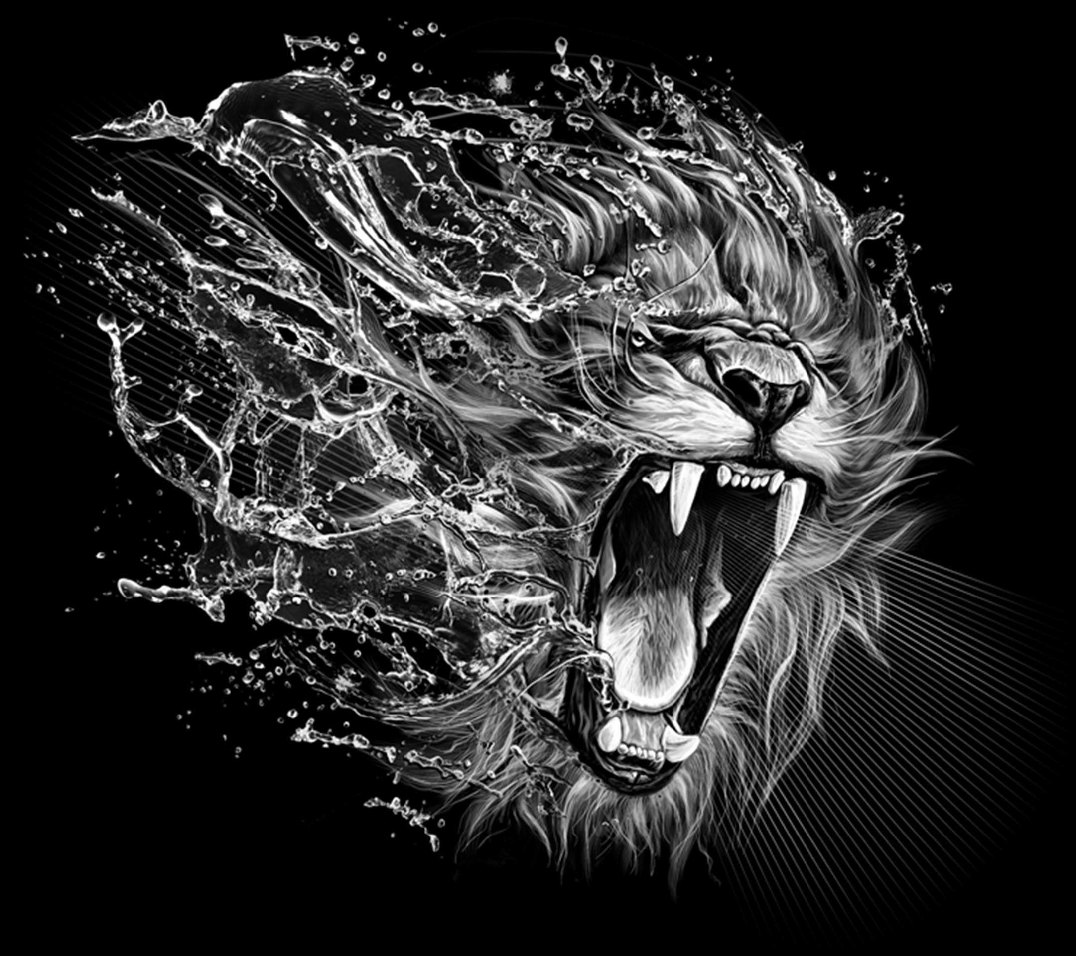 Favori Fond d'écran Galaxy S5 Lion 02 2160x1920 gratuit DT97