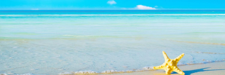 """Résultat de recherche d'images pour """"bannière plage"""""""