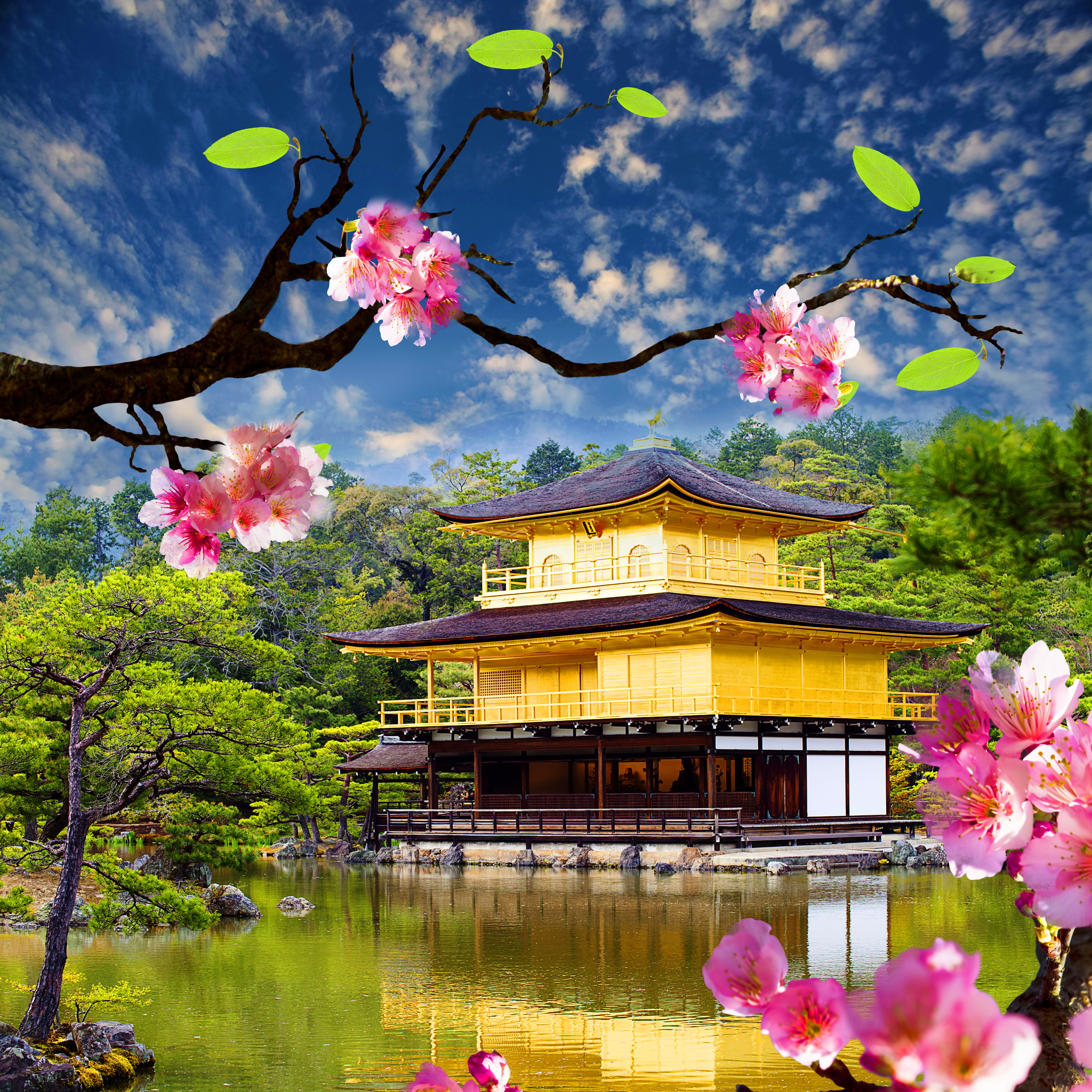 Fond D Ecran Ipad Jardin Japonais 2048x2048 Gratuit