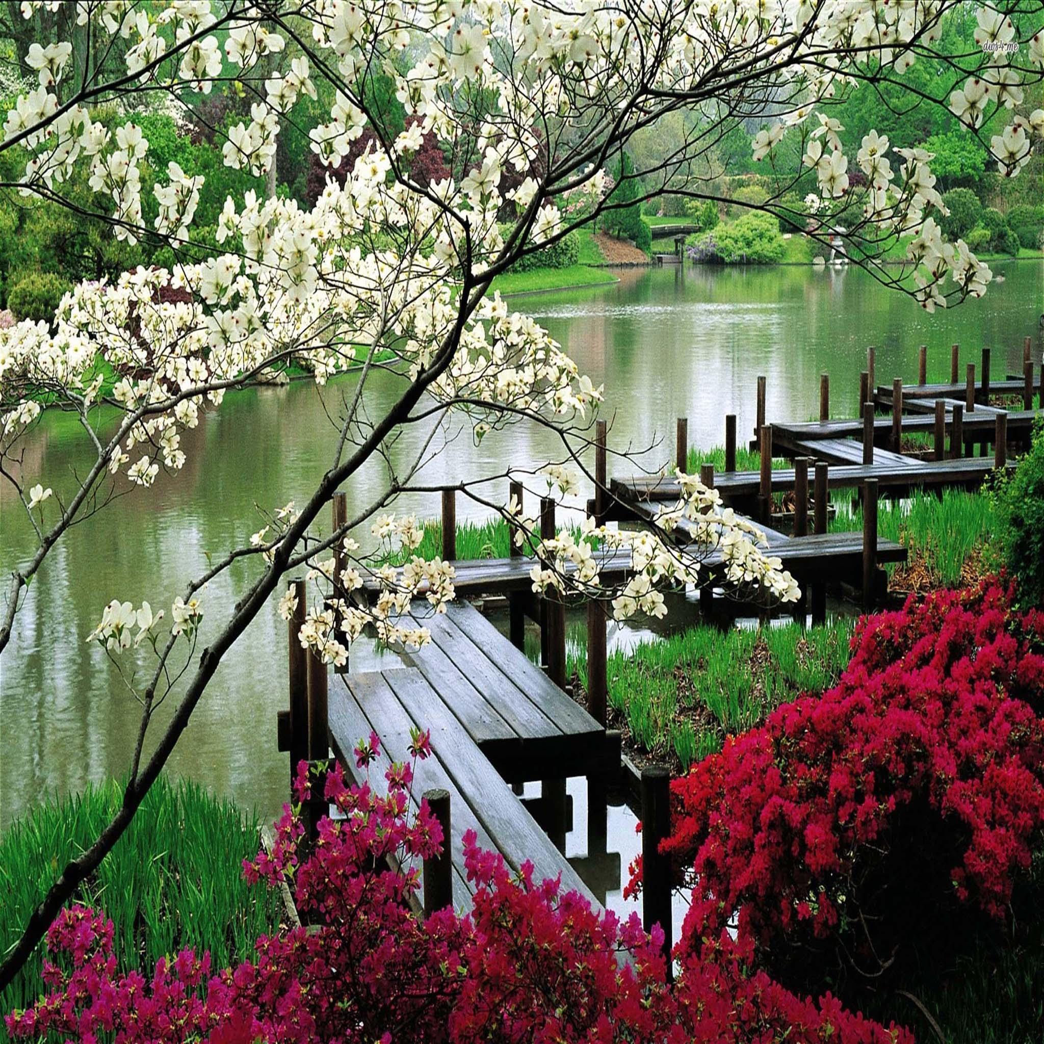 Fond d 39 cran ipad jardin japonais 2048x2048 gratuit for Image jardin japonais