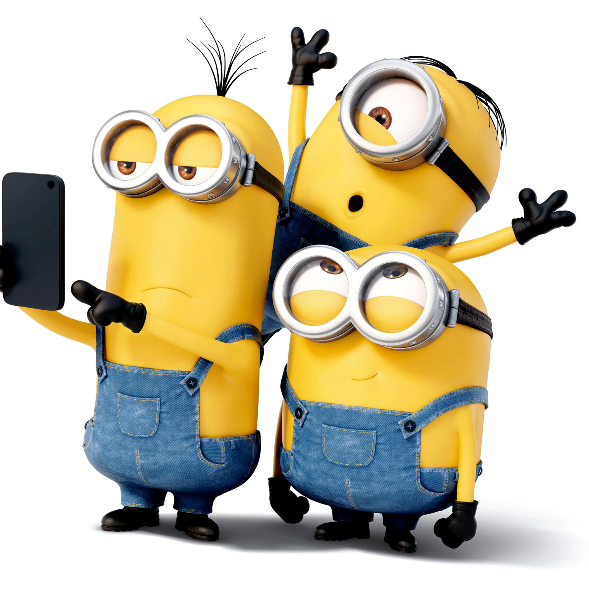 fond d 39 cran ipad minion selfies 2048x2048 gratuit. Black Bedroom Furniture Sets. Home Design Ideas