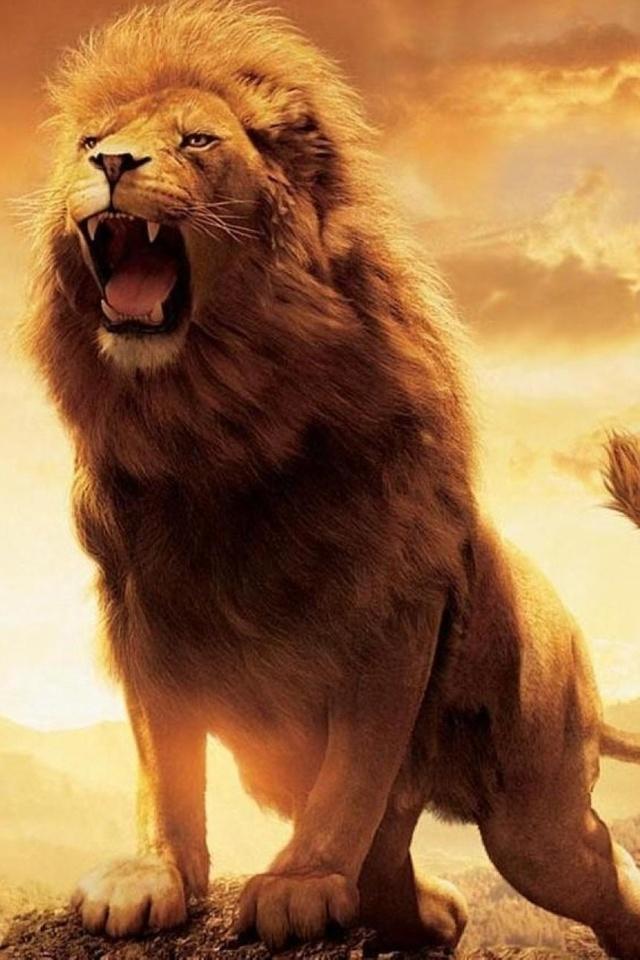 Souvent Fond d'écran iPhone 4 Lion 04 640x960 gratuit AH55