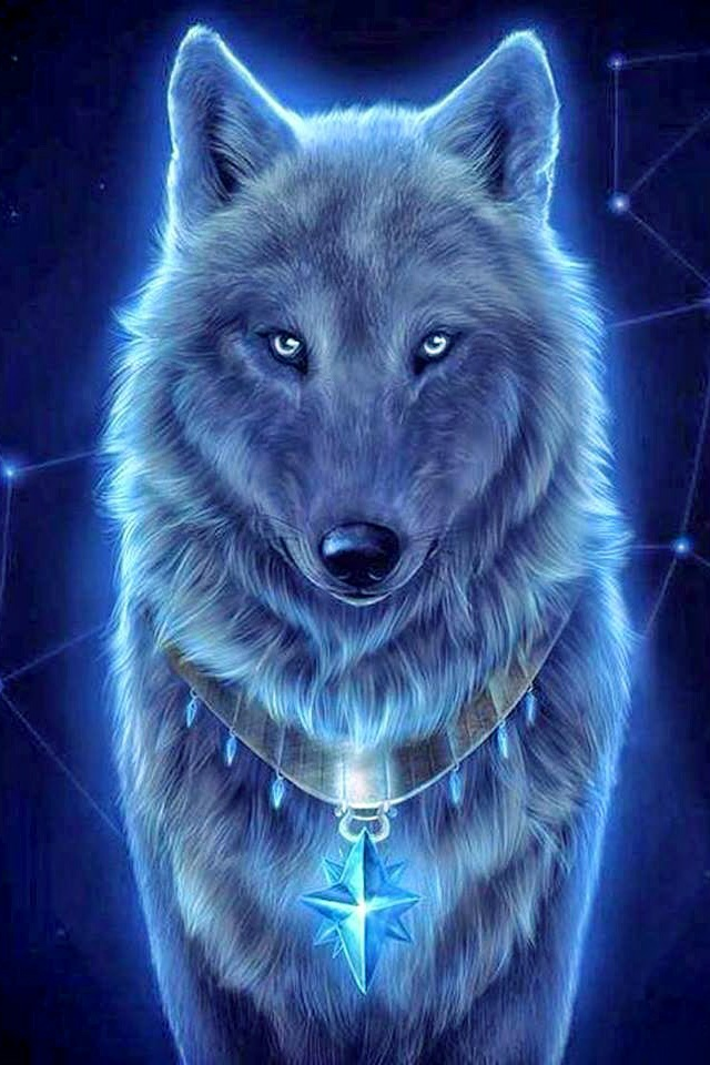 fond d'ecran gratuit loup